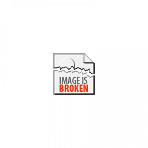 Turtles Donatello